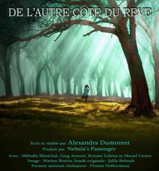 Affiche du Film DE L'AUTRE COTE DU REVE
