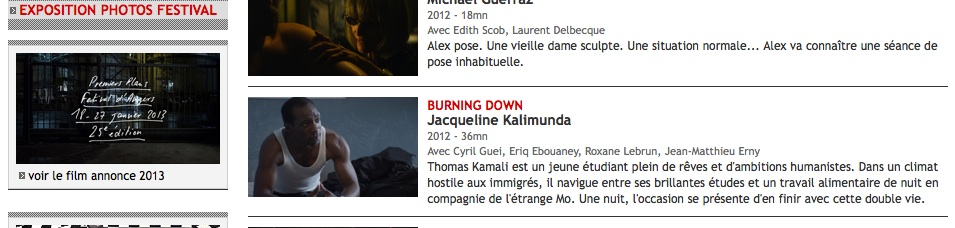 Film BURNING DOWN - Festival d'Angers