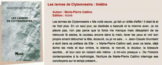 Les Larmes de Clytemnestre - monologue